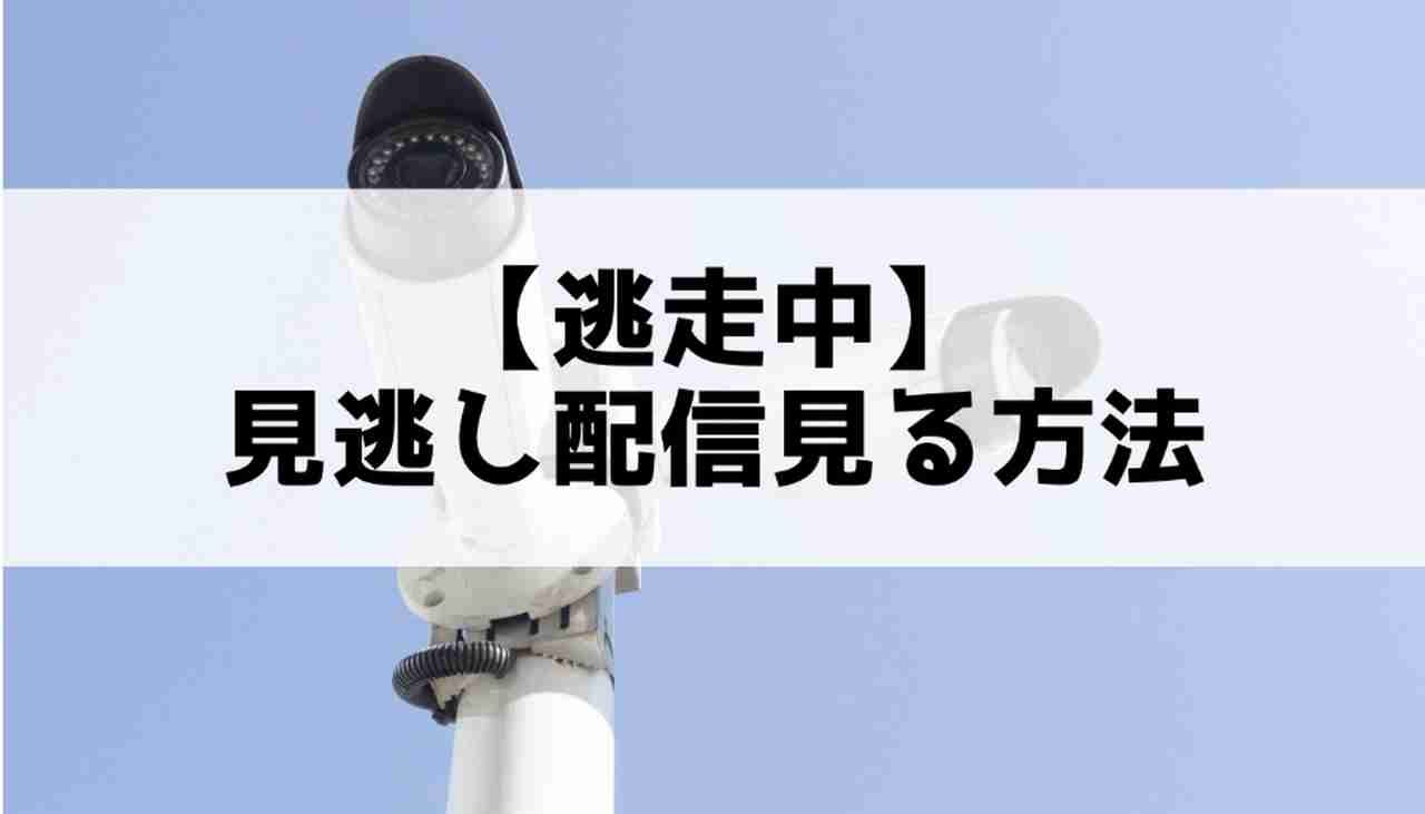 中 動画 フル 逃走